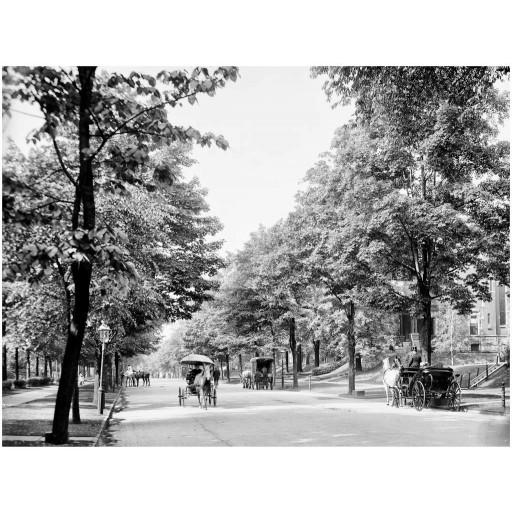 Delaware Avenue, c1904
