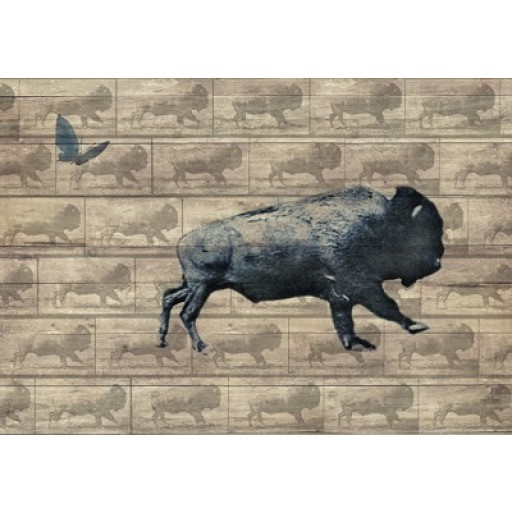 Running Buffalo with Butterfly