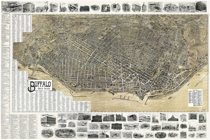 Bird's Eye View Buffalo 1902