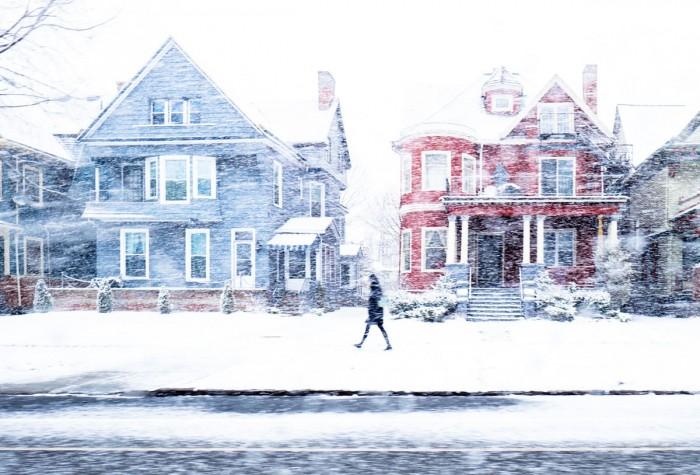 Buffalo Snow- Blue House Red House