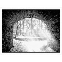Delaware Park, Arch