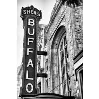Sheas Buffalo 2